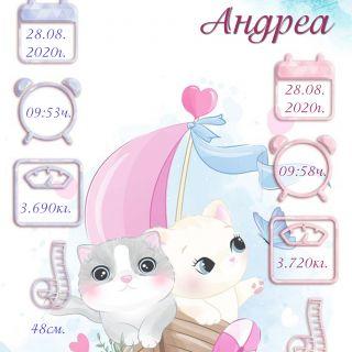 Бебешка визитка 4 за близнаци момиче и момче